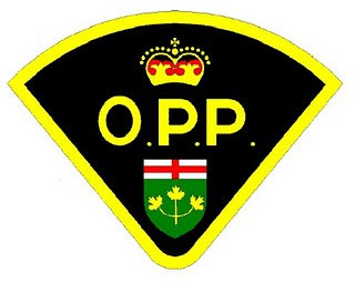 {OPP CHARGE THREE LOCAL MALES WITH ASSAULT CAUSE BODILY HARM}